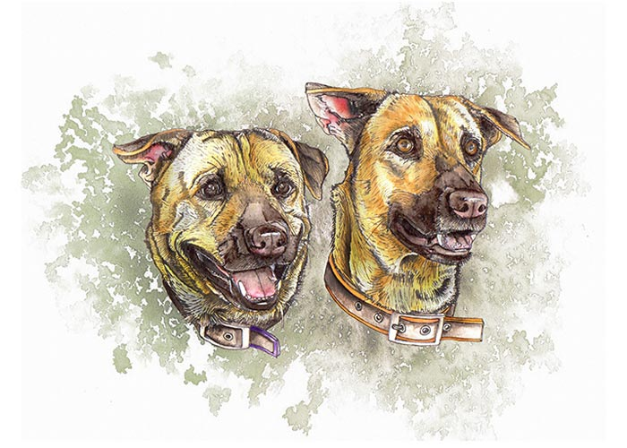 Dexter and Rosie Watercolor Painting