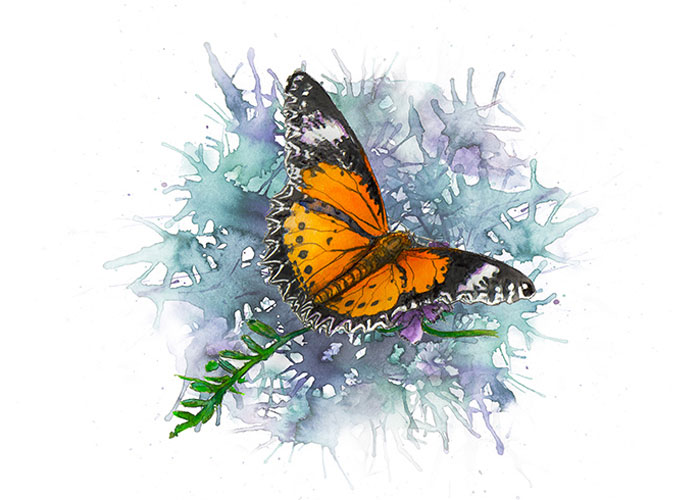 Leopard Lacewings Butterfly Watercolor Painting