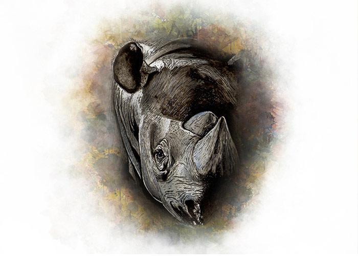 Rhino Watercolor Portrait