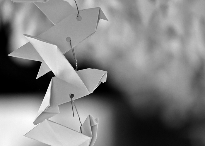 Black & White Photography Paper Birds