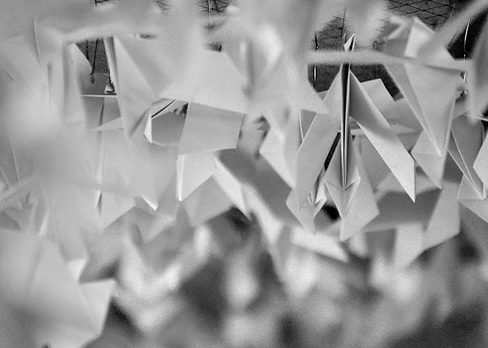 Black & White Photography : Paper Birds