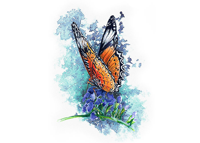 Watercolor Painting of an orange Butterfly