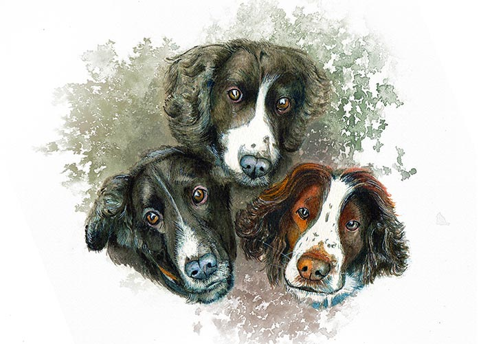 Watercolor Painting of three dogs